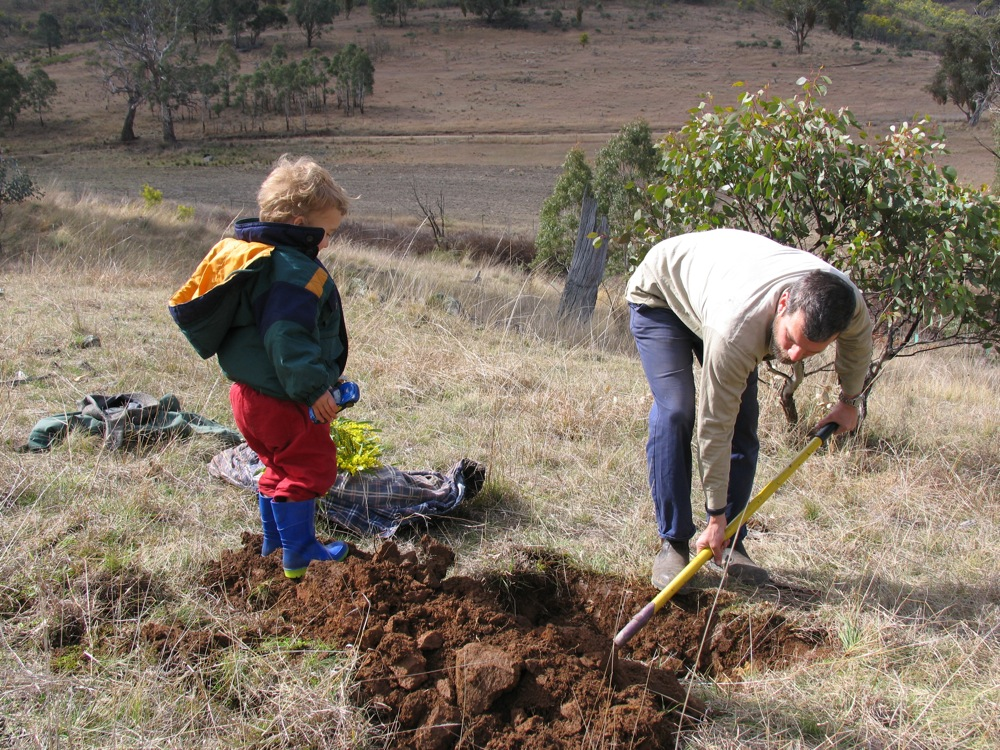 How to bury your dog - Milkwood: permaculture courses ...