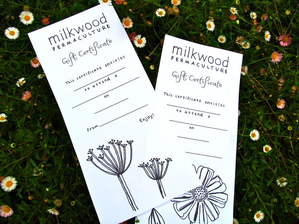 Giving the gift of knowledge milkwood gift certificates milkwood which brings me to our beautiful new gift certificates by emerging artist and former milkwood intern belinda joy sheekey m4hsunfo
