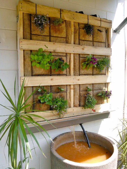 DIY Vertical Aquaponics on the patio - Milkwood: permaculture courses ...