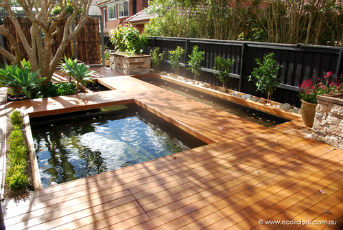 Charlie 39 s latest aquaponics systems and a course next for Wooden koi pond construction