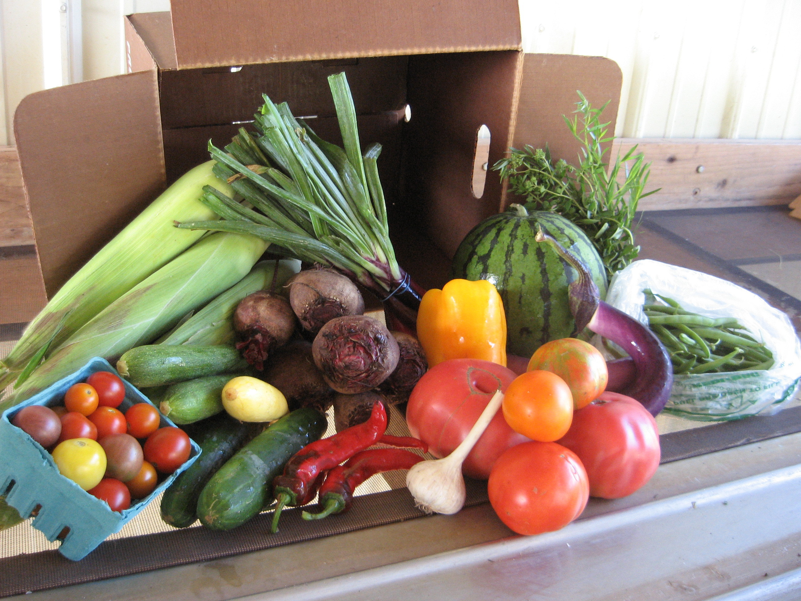 Weekly CSA box - photo by Loon Organics