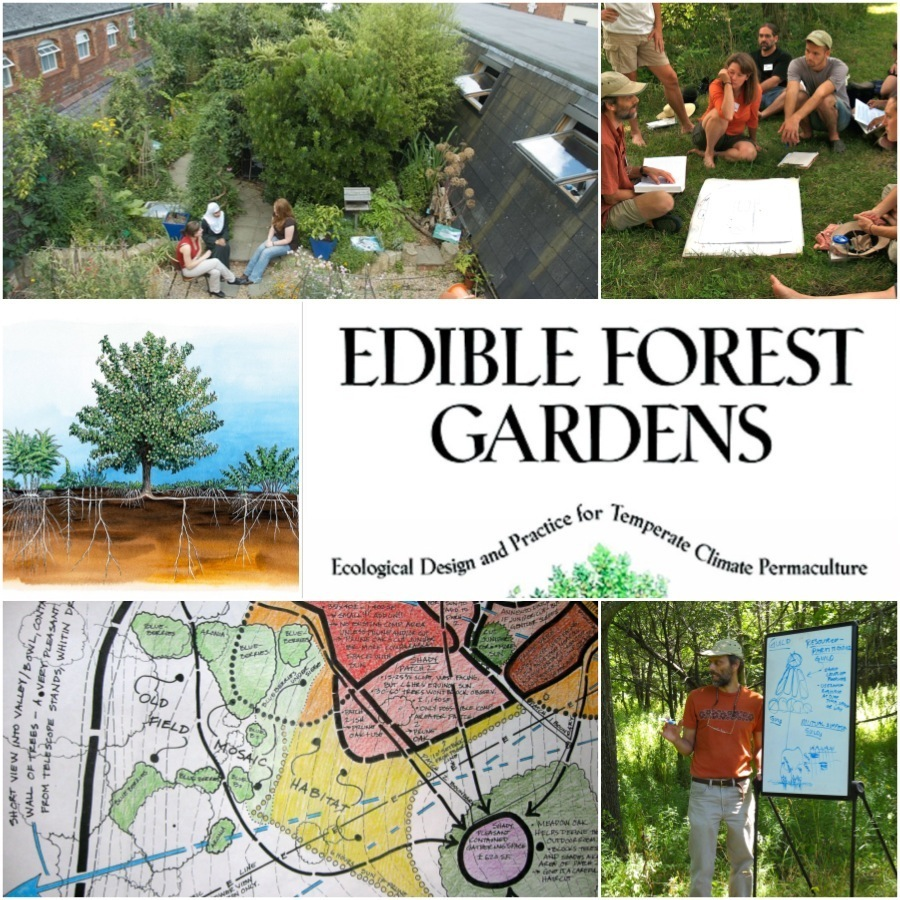 Edible Forest Gardens author Dave Jacke is coming to ...