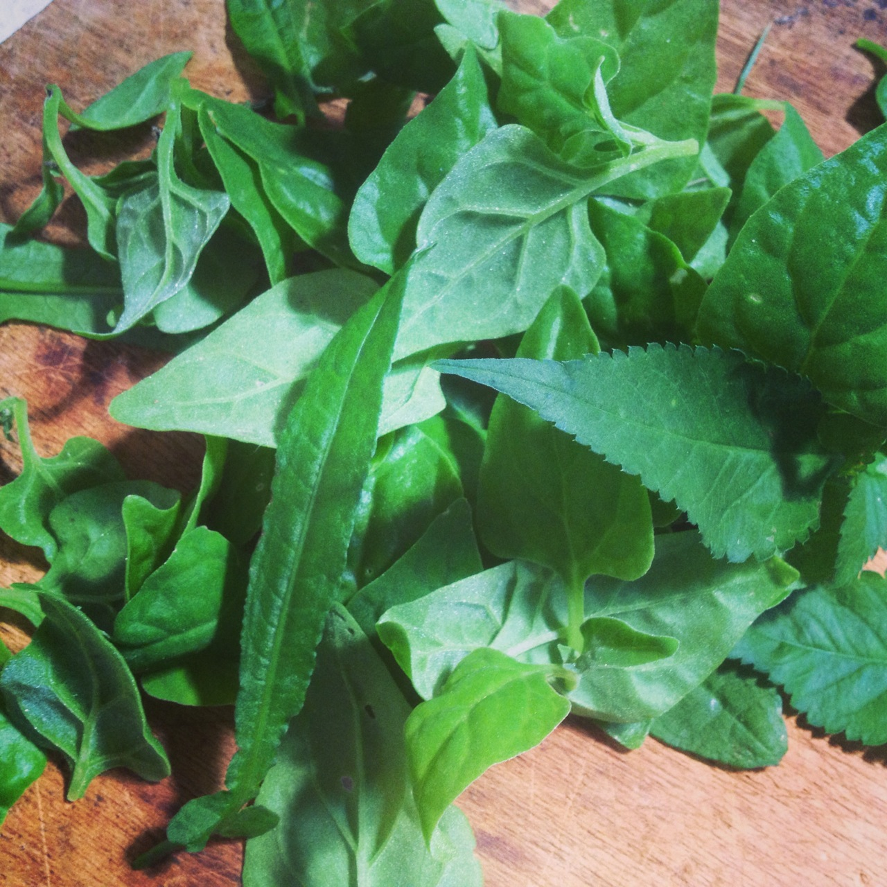 Winter weeds (warrigal greens, cobblers pegs, dock) with scrambled eggs to help the lurgy pass
