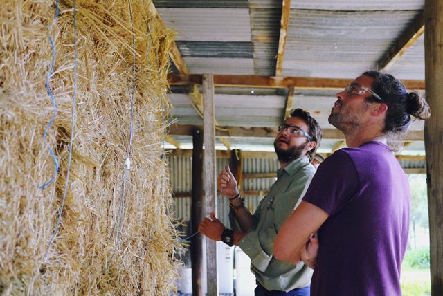 strawbale building at Milkwood's Natural Building course