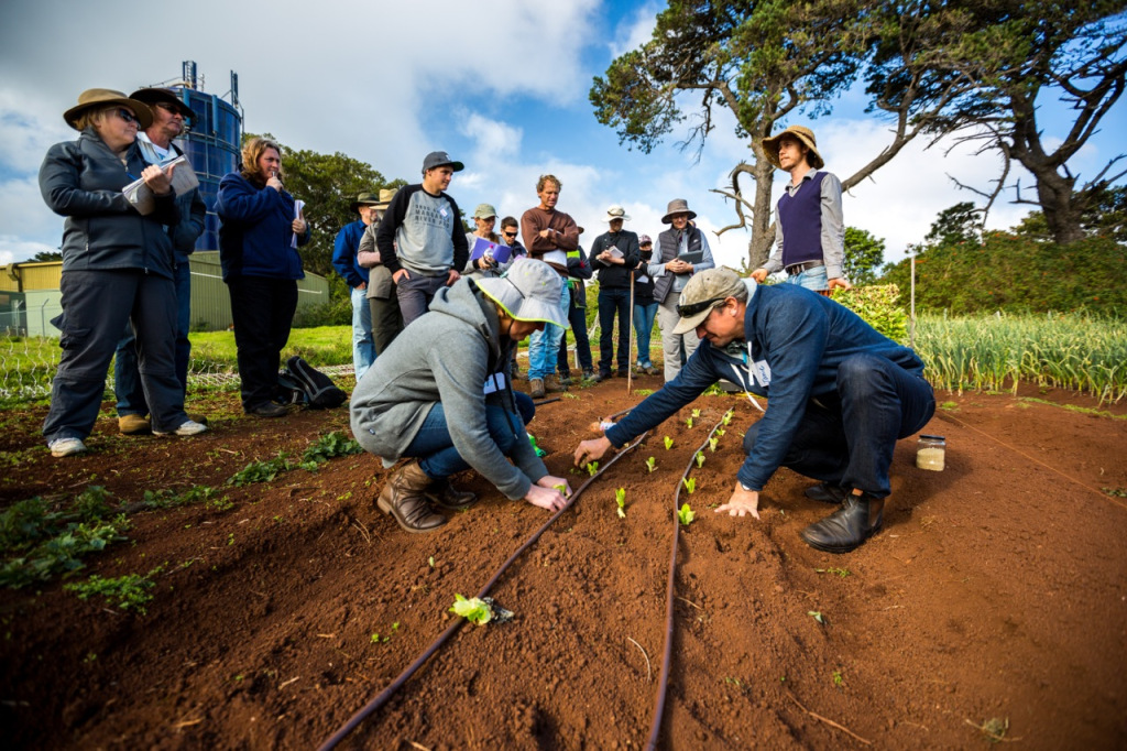 Intro to Market Gardening | Milkwood Permaculture, 13 Sep 2014.