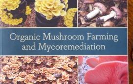 Tradd Cotter Mushrooms Book1