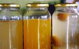 1412 4 ferments - 4