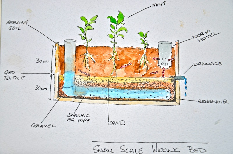How To Make A Mobile Forest Garden With Wicking Bed