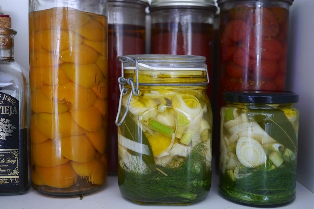 Pickled Fennel Agrodolche 14