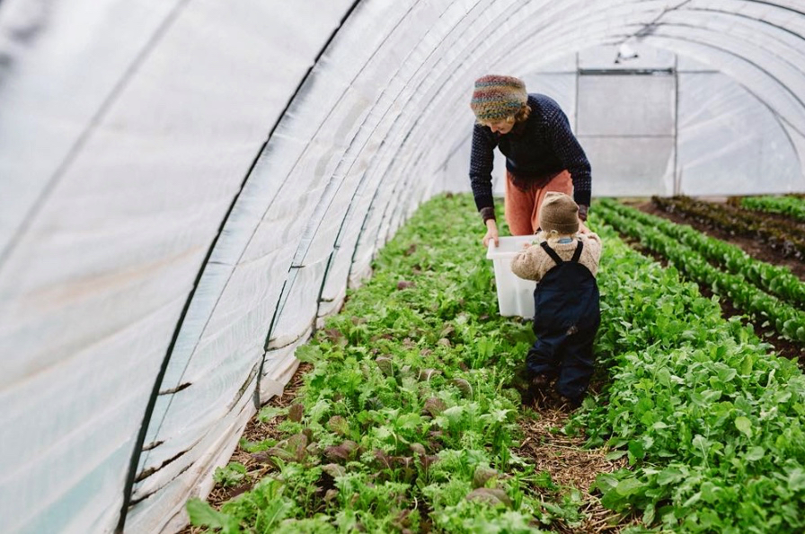 5 Things every Future Farmer needs to know - with Olivier