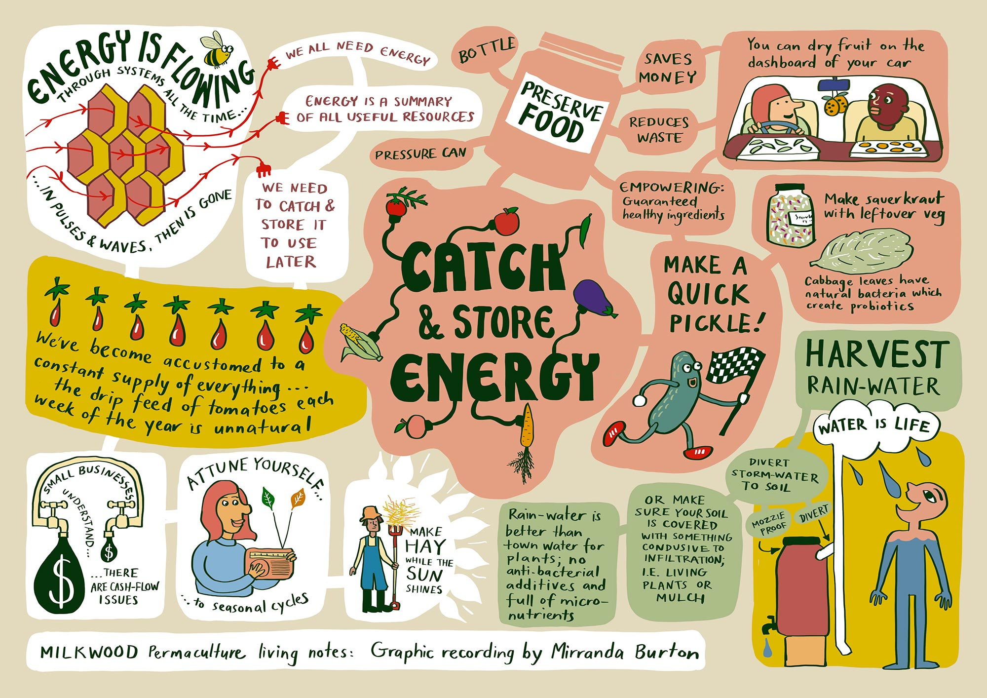 Permaculture principle #2 - Catch and Store Energy